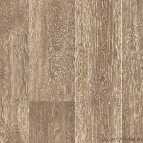 Chaparral Oak 544